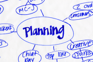 Entrepreneur Planning